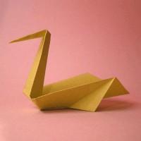 پلیکان کاغذی